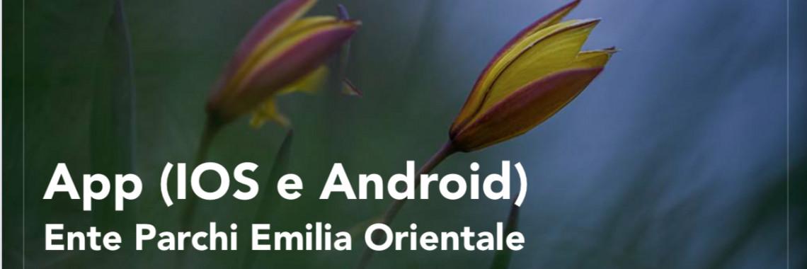 immagine presentazione app