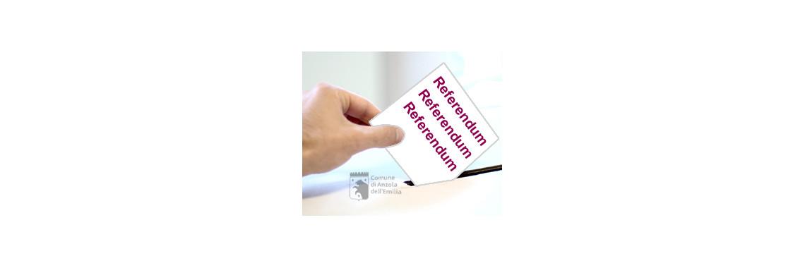immagine referendum